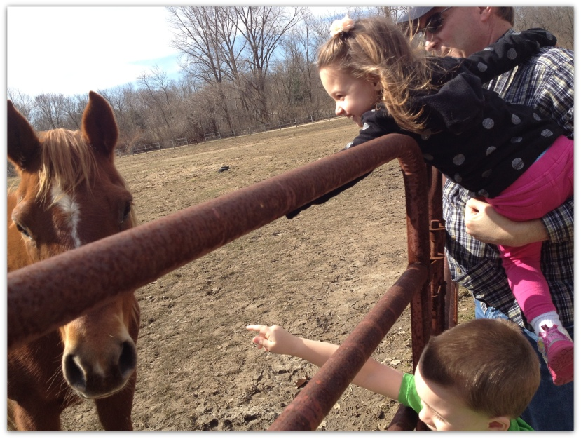 Horse-in around