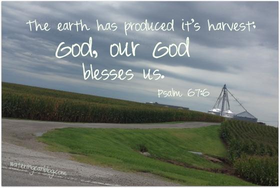 God blesses the harvest