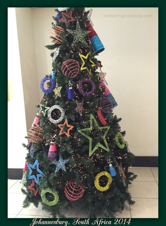 South African Christmas Tree