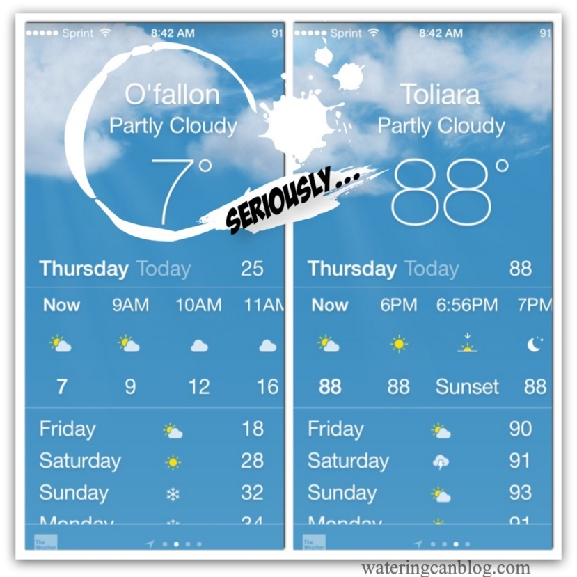 Madgascar weather