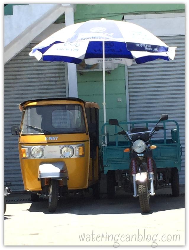 Madagascar Colors--transportation