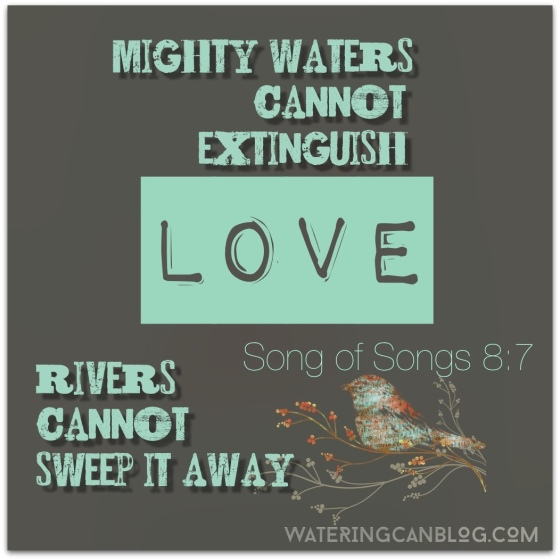 Song of Solomon 8.7