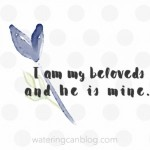 Song of Songs, He is Mine
