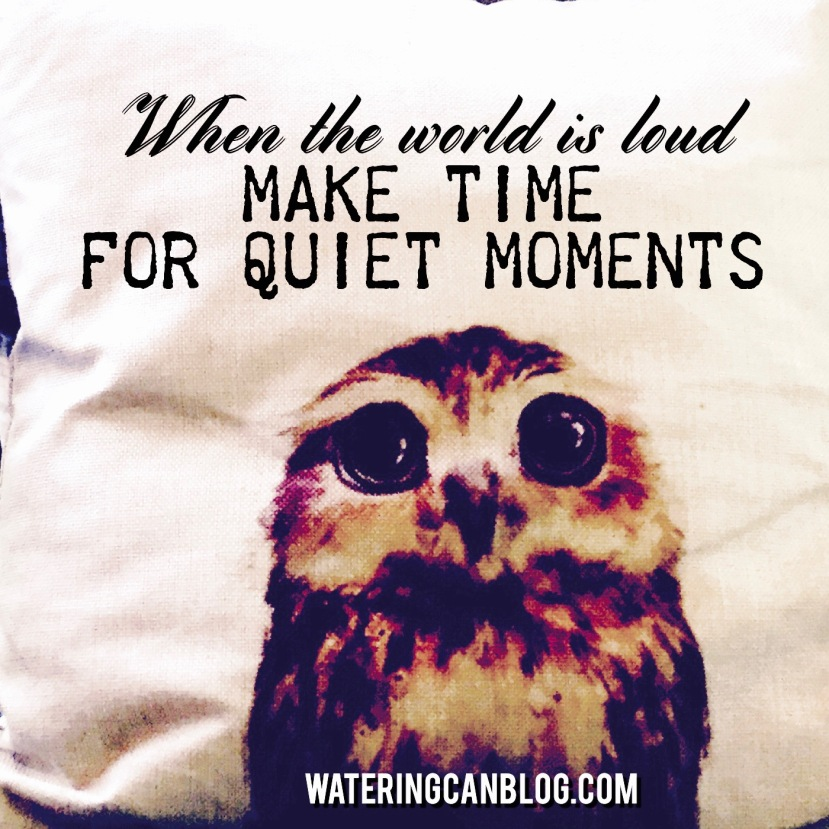 Make Time for Quiet Moments