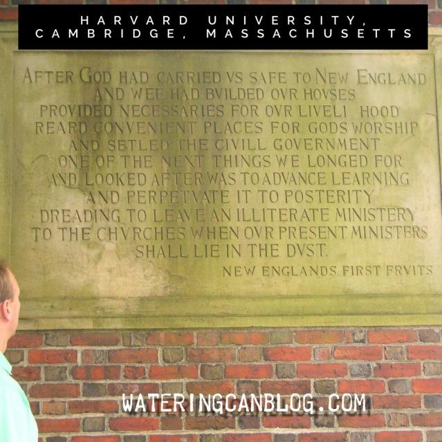Harvard University Quote