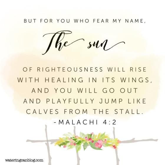 Malachi 4.2