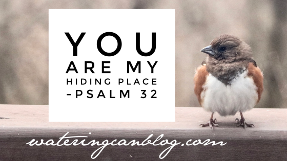 #inspiration #blog #wateringcanblog #psalms #Bible #truth #faith #protection #peace #bird #nature #photography #poetry