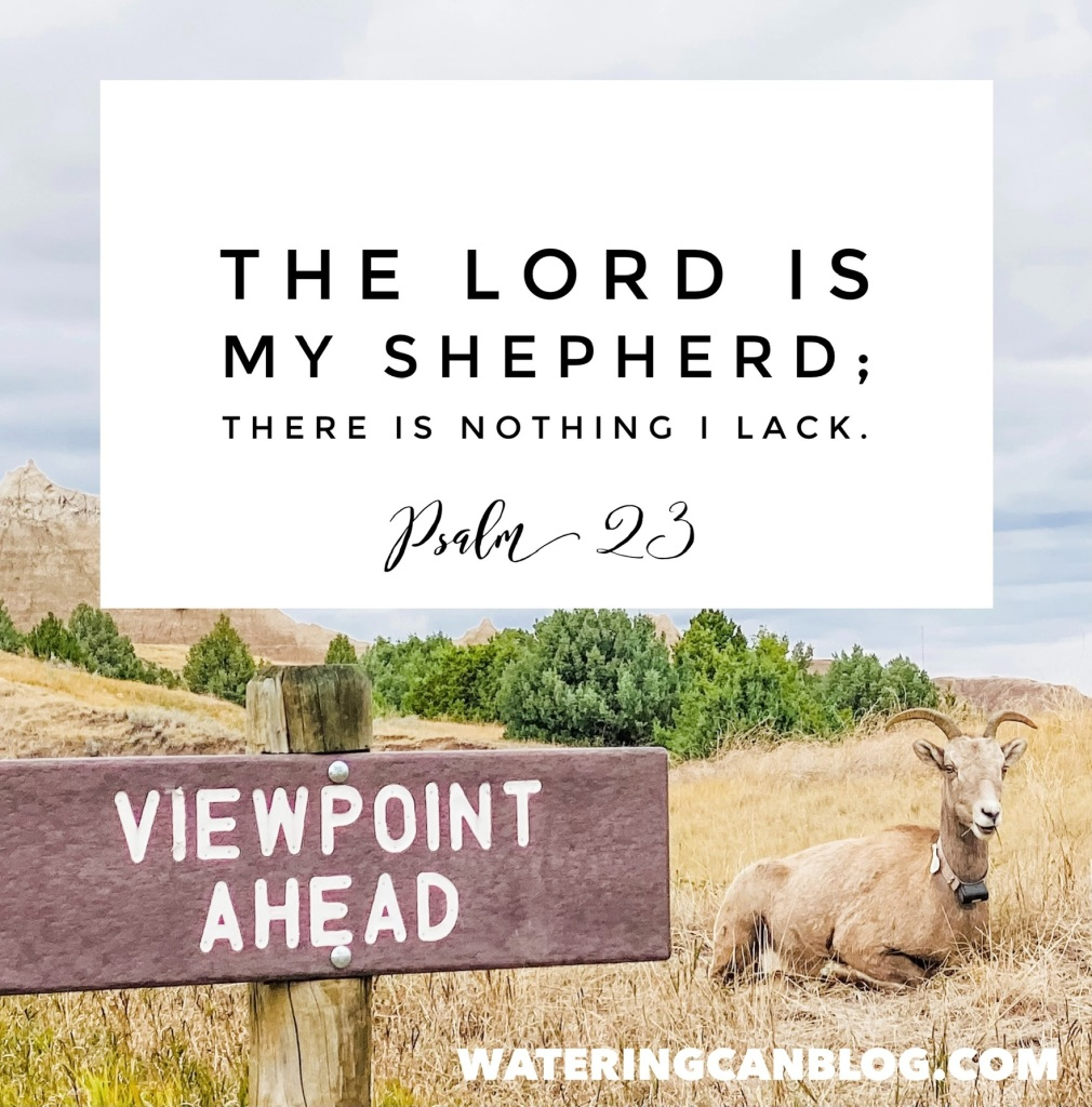 #fear #prayer #23Psalm #wateringcanblog #TheGoodShepherd #faith #hope #Bible